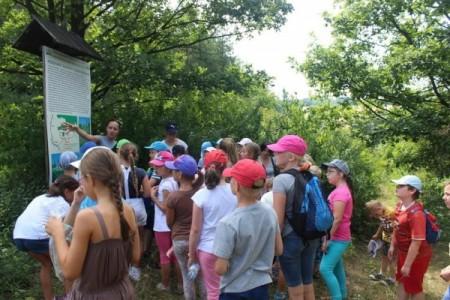 Kolorowa Lokomotywa 2015 — wPrzedborski Park Krajobrazowy.