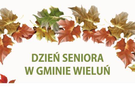 Wieluńska Seniorada – relacja