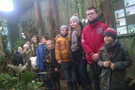Ferie zWDK – zimowe potyczki znudą